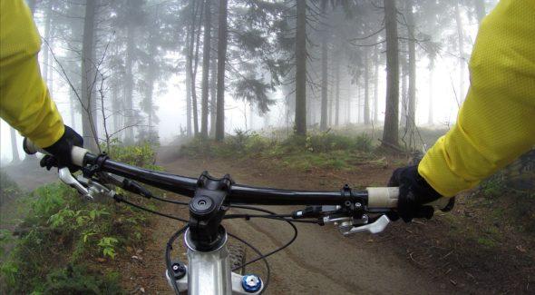 The Cyclist's Vigilance